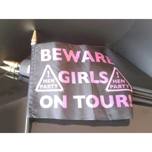 Set of six Hen Party Hand Flags